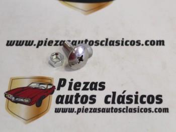 Tornillo Paragolpes Citroen 2CV , Derivados y Mehari Inox.