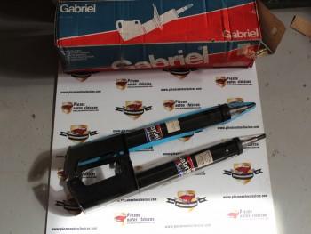 Par De Amortiguadores Traseros Gabriel 35887 Renault 25