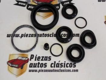 Kit Reparación Pinza De Freno Delantero Renault 4, 5, 6, Super 5, Express, Clio, Twingo 45mm